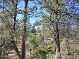 805 Monument Valley Drive - Photo 7