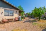 2213 Aster Drive - Photo 50