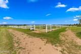 12733 Antelope Run Road - Photo 75