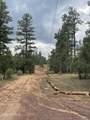 2724 Black Bear Trail - Photo 10