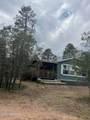 2724 Black Bear Trail - Photo 16