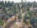 2217 Mountain Lion Lane - Photo 21