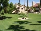 4901 Calle Los Cerros Drive - Photo 26