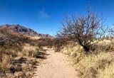 72+ Ac Cielo Vista Road - Photo 22
