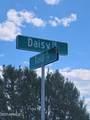 7923 Daisy Drive - Photo 6