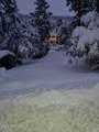 9313 Coyote Drive - Photo 36