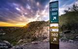 4303 Cactus Road - Photo 20