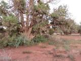 4365 & 4359 E Pinto Road - Photo 6