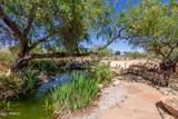 12050 Desert Sanctuary Road - Photo 33