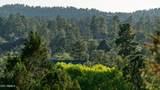 706 Grapevine Drive - Photo 57