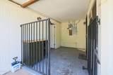 1514 Campo Bello Drive - Photo 40