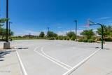23059 Camina Buena Vista - Photo 58