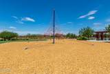 23059 Camina Buena Vista - Photo 59