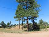 2806 Pine Hill Drive - Photo 4