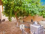 4642 Mariposa Grande Lane - Photo 26