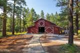 12620 Lillie J Ranch Road - Photo 10