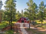 12620 Lillie J Ranch Road - Photo 53
