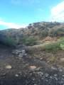 000 Trilby Mine - Photo 5