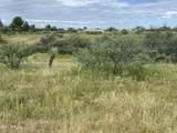 25245 Tonopah Trail - Photo 2