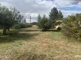 3460 Desert Drive - Photo 55