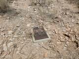 8890 Canyon Vista Drive - Photo 5