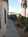 3911 Mariposa Grande Lane - Photo 29