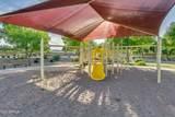 35627 Calico Court - Photo 87