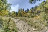 1640 Roadrunner - Photo 42