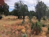 3432 Sierra Circle - Photo 10