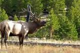 17325 Sequoia Drive - Photo 35