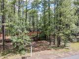4310 Deep Forest Drive - Photo 3