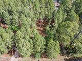 4310 Deep Forest Drive - Photo 8