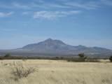 D Los Amigos Trail - Photo 1