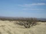 D Los Amigos Trail - Photo 3