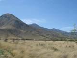 D Los Amigos Trail - Photo 5