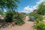 8786 Saguaro Blossom Road - Photo 35