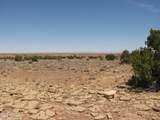 398 Yucca Place - Photo 2