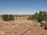 398 Yucca Place - Photo 4