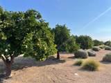 3686 Meadowview Drive - Photo 21