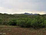 TBD Pedregosa  40.36 Acres Road - Photo 19
