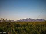 TBD Phillips  30 Acres - Photo 11