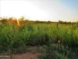 TBD Phillips  30 Acres - Photo 9