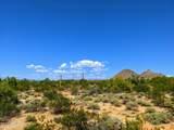 9414 Mariposa Grande Drive - Photo 1