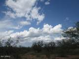 9877 Calle Joanna - Photo 38