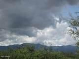 9877 Calle Joanna - Photo 42
