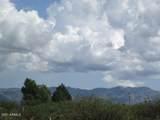 9877 Calle Joanna - Photo 5