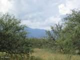 9877 Calle Joanna - Photo 9