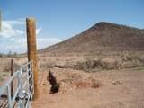 29901-99 Villa Cassandra Way - Photo 3