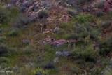 14617 Shadow Canyon Drive - Photo 47