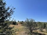 2253 Big Bear Circle - Photo 14